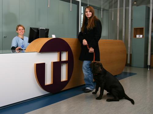Jobs Für Tiermedizinische Fachangestellte