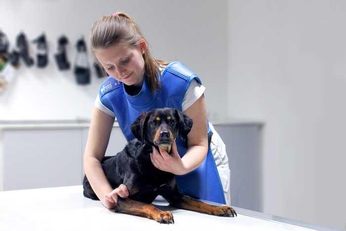 Assistenzärztin Carina Atzberger im Röntgenraum.